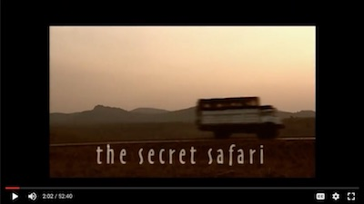 Icon The Secret Safari