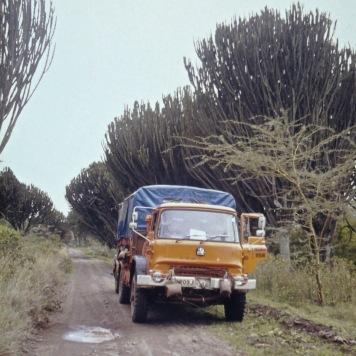 GLP203J - Africa Northbound 1977 (3) - Kenya - Leader Derek Biddle