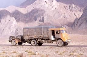 RXP597 (Rein Kamar)